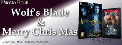 Wolf's Blade, by Clare Dargin   #contemporary romance, #eroticromance, #paranormalromance,