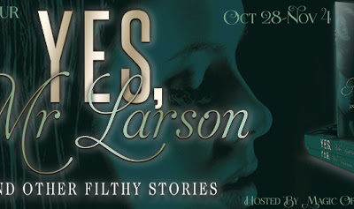 #BDSM  Yes, Mr. Larson by JJ Hayle  #EroticRomance