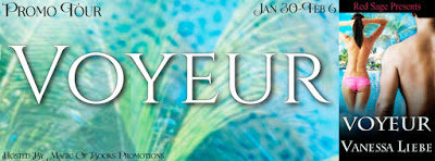 Voyeur, a new #Contemporary #Erotica Colllection